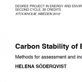 Carbon Stability of Biochar: Methods for assessment and indication [Master thesis]