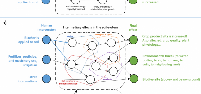 Complexity in biochar agronomic effects